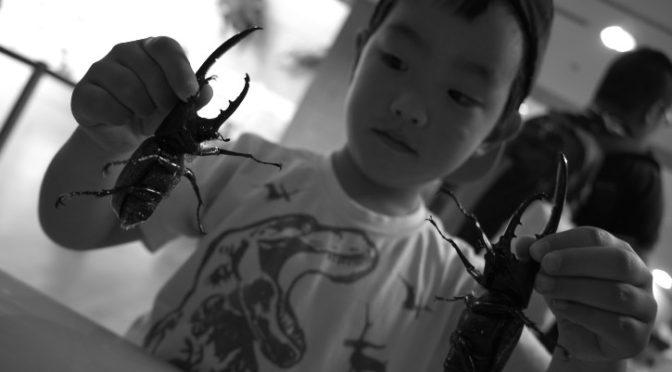 群馬県立ぐんま昆虫の森(群馬県桐生市) – 2019/5/5(日)